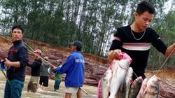 VIDEO: Người dân đổ xô về hồ Kẻ Gỗ bắt cá sau lũ