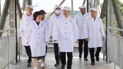 Nghệ An sẽ thưởng tiền tỉ cho huyện về đích NTM, 80 triệu đồng/sản phẩm OCOP 5 sao