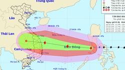 Khẩn cấp: Sáng 28/10, bão số 9 có thể đổ bộ Đà Nẵng - Phú Yên, nâng một cấp rủi ro thiên tai