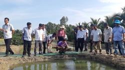 An Giang: Ứng dụng công nghệ nâng cao giá trị thủy sản