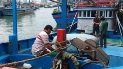 Khánh Hòa: Ngưng các hoạt động đánh bắt, vận chuyển, lưu thông trên biển kể từ 18h