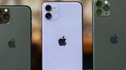 Giá iPhone 11 Pro và 11 Pro Max giảm không phanh