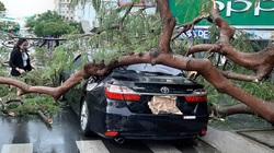 5 điều cần làm ngay với ô tô trước khi bão đến