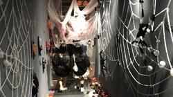 Người Sài Gòn chi tiền triệu, rước ma quỷ về chơi Halloween