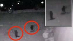 Người ngoài hành tinh thật sự đã xuất hiện ở Texas?
