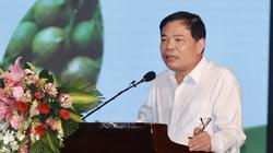 Bộ trưởng Bộ NNPTNT: Phát triển mắc ca, quyết không theo phong trào