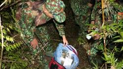 Nghệ An: Cuộc đấu súng thu giữ 30 bánh heroin trong rừng sâu