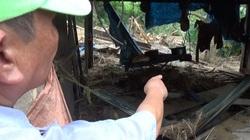 Một ngôi làng 80 hộ dân ở Quảng Nam bị bão số 9 đánh tan tành, cô lập với bên ngoài