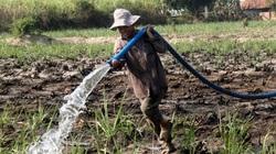 100% công trình đã được cấp quyền khai thác tài nguyên nước