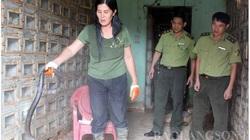 Lạng Sơn: Dân đang nuôi 12.400 con động vật hoang dã quý hiếm, có khỉ đuôi dài, rùa câm và những loài rắn độc nào?
