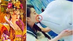 """2 mỹ nhân Trung Quốc hôn cá heo bị """"ném đá"""" tả tơi khiến Phạm Băng Băng bị """"khui"""" quá khứ muốn giấu kín?"""