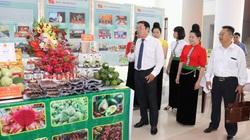 Hội Nông dân Sơn La: Tổ chức Hội thi trưng bày nông sản Sơn La