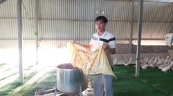 Hà Nội: Trại nuôi vịt - cá 10ha của anh nông dân Thanh Oai, mỗi năm lãi 700 triệu đồng