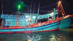 Bình Định: Tin mới nhất về vụ chìm tàu, cứu sống 13 ngư dân bơi thuyền thúng giữa đêm tối
