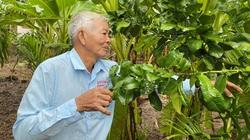 """Quảng Ngãi: Ông nông dân nuôi con đặc sản đầy gai nhọn hoắt, trồng vườn """"lung tung"""" mà thành tỷ phú"""