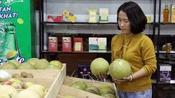 Muốn mua toàn của ngon vật lạ ngày 22/10 đến hội chợ OCOP ở Lào Cai