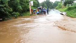 Ảnh và Video: Mưa lũ kỷ lục gây thiệt hại nặng ở Quảng Trị