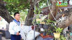 Tuyệt vời phong lan Đà Lạt vươn mình giữa gió mặn ở quần đảo Trường Sa