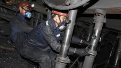 Dù ảnh hưởng của Covid-19, TKV vẫn nộp ngân sách cho Quảng Ninh trên 12.400 tỷ đồng