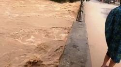 Bão số 12: Tỉnh Bình Định đã có thiệt hại đầu tiên về người