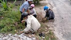 Ấp tự quản bảo vệ môi trường: Tạo thói quen ứng xử  thân thiện với môi trường