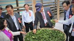 Làng mẫu trồng dâu nuôi tằm