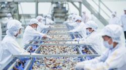 Nông nghiệp - trụ đỡ qua gian khó (bài 2): Sức mạnh từ những nhà máy chế biến nông sản