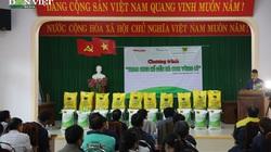 """Báo NTNN/điện tử Dân Việt và hành trình """"Trao sinh kế đến người dân vùng lũ"""""""