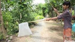 Nghề lạ ở Tiền Giang: Tranh thủ đi câu rắn mối, các bé này kiếm cũng ối tiền
