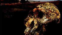 """Hài cốt 2 triệu năm tiết lộ sự """"biến hình"""" gây sốc của con người"""