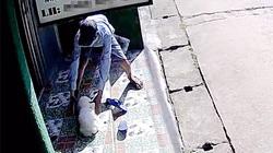 Camera ghi hình kẻ trộm bắt chó cảnh giá 10 triệu ở Thủ Đức