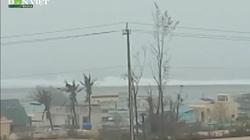 Clip: Gió bão ở Lý Sơn rít giật ghê gớm, huyện đảo di dời khẩn cấp gần 1 nghìn người