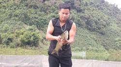 Tham gia HTX nuôi cá lồng, người dân Nậm Giôn sống khoẻ