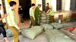 Thu giữ gần 600 kg thuốc Bắc nhập lậu trôi nổi