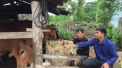 Giảm nghèo bền vững, nông thôn Cư M'gar đổi mới