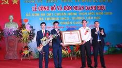 Xã cuối cùng của huyện Phú Xuyên về đích nông thôn mới: Sức bật từ nghề truyền thống ở Sơn Hà