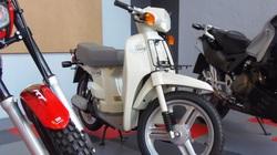 Khám phá 7 dòng Honda SH được yêu thích ở Việt Nam