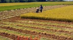 6 lưu ý người dân cần nắm rõ khi chuyển mục đích sử dụng đất