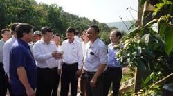 Việt Nam đứng đầu ASEAN về thuốc bảo vệ thực vật sinh học