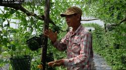 """""""Chơi lớn"""" với ứng dụng nông nghiệp công nghệ cao, tỉnh Đồng Nai xuất hiện nhiều tỷ phú nông dân"""