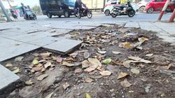 """Cận cảnh những """"ổ voi"""" trên vỉa hè lát đá độ bền 70 năm tại Hà Nội"""