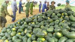 Dịch Covid -19 làm đứt gãy chuỗi giá trị nông sản Việt Nam