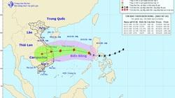 Bão Goni cách quần đảo Hoàng Sa 820km, trở thành cơn bão số 10, gió giật cấp 12