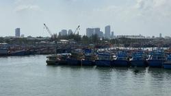 Đà Nẵng: Đường Việt Corp trúng liên tiếp 2 gói thầu xây lắp ở cảng cá Thọ Quang