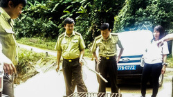 Khỉ mốc quý hiếm nặng 8kg đi lạc vào nhà dân ở Bình Định