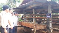 Gia Lai: Làng Hreng làm nông thôn mới kiểu gì mà bây giờ ai đến cũng tấm tắc khen là sạch hẳn lên?