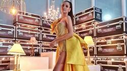 BTC Hoa hậu Hoàn vũ Colombia 2020 công khai xin lỗi Catriona Gray sau loạt sự cố