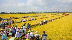 Khơi thông vốn cho nông nghiệp