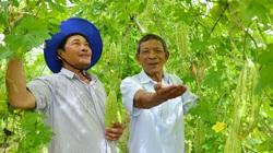 Kiên Giang: Chi hội trưởng U70 vẫn nhiệt tình lội ruộng, thăm rẫy cùng nông dân
