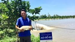 Đầu tư 11 mẫu đất nuôi cá VietGAP, anh nông dân Hà Nội thu nhập hơn 3 tỷ đồng/năm